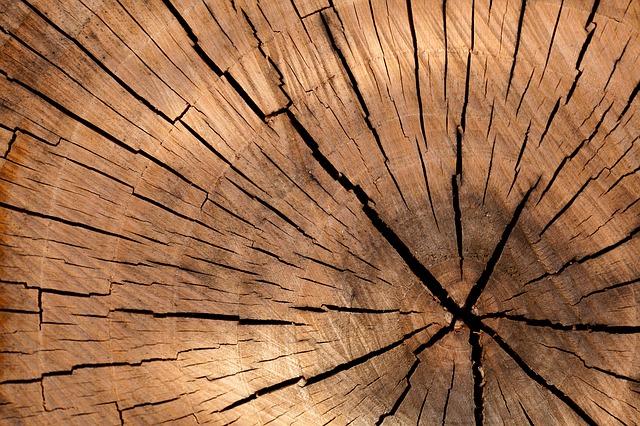 I difetti naturali del legno