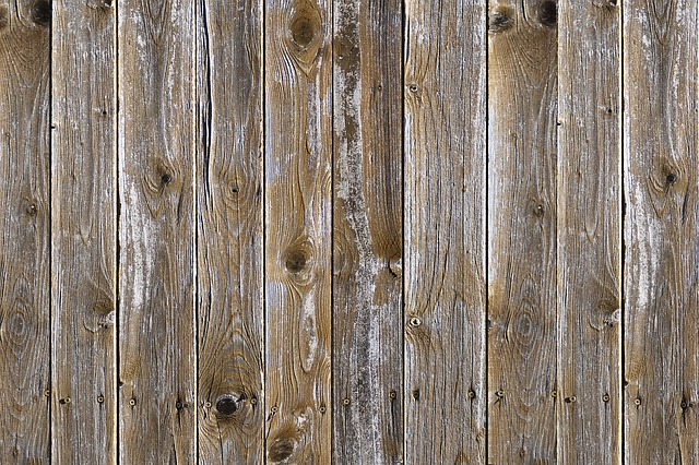 I difetti del legno
